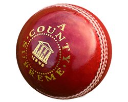 Standard Leather Cricket Balls