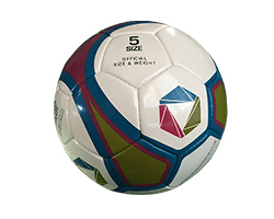 Full Size Standard Football